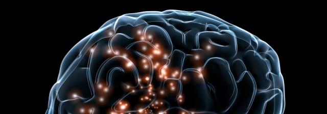 Brain with Neurones